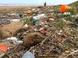 Pollution | Coastal Care