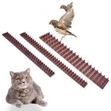 Hot Offer 9f9d Anti Climb Fence Wall Spikes Garden Security Intruder Bird Cat Repellent Burglar Anti Bird Stab And Anti Climbing Nails Cicig Co