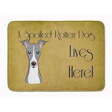 bb1484rug italian greyhound spoiled dog