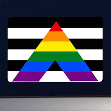 Amazon Com Dark Spark Decals Lgbt Gay Pride Ally Flag 3 Inch Full Color Vinyl Decal For Indoor Or Outdoor Use Cars Laptops Decor Windows And More Automotive