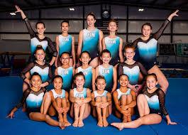 our peive gymnastics team info