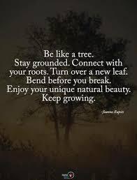 tree quotes tumblr