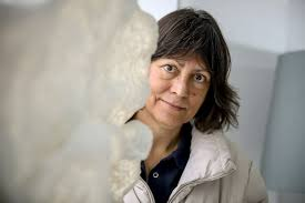 "Yvonne Rogers: ""A tecnologia poderá questionar o nosso significado de  inteligência""   Entrevista   PÚBLICO"