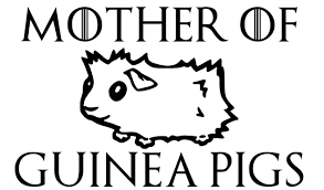 Best Mother Of Guinea Pigs Decal For Sale In Pensacola Florida For 2020