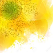 Girasol Soleado Brillante De La Flor Amarilla En El Fondo De La