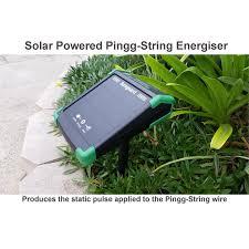 Sureguard 70m Pingg String Electronic Dog Fence Starter Kit