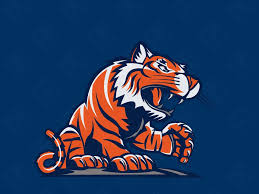 47 detroit tigers iphone wallpaper on