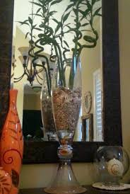 cork lucky bamboo and seas in