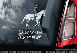 Slow Down For Horses Car Sticker Horse Equestrian Window Stickers Sign Decal V1 Ebay