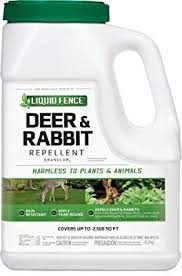 10 Best Deer Repellents For A Deer Free Backyard