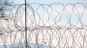 S Africa To Construct Fence Along Zimbabwe Border