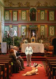 Forensic canines search for burial sites at Old Mission Santa Inés | Local  News | lompocrecord.com