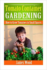 tomato container gardening how to grow
