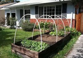 garden box ideas a comprehensive guide