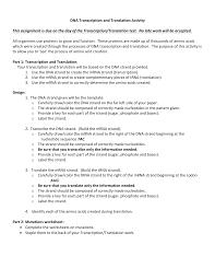dna transcription and translation project