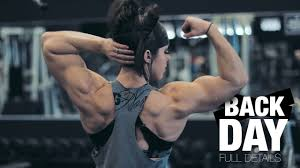 back day with dlb full workout you