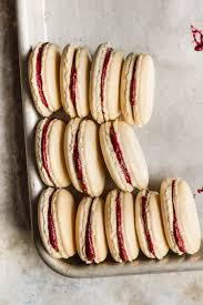 macaron recipe with blueberry filling