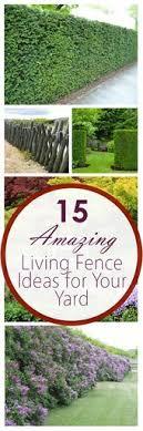 100 Living Fence Ideas Living Fence Outdoor Gardens Garden Design