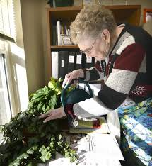FOX: Volunteer nurtures plants, relationships at Sioux City ...