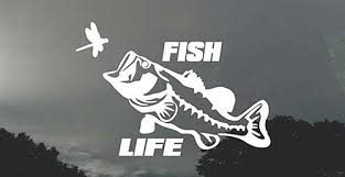 50 Best Fishing Decals Fishing Stickers 2020 Captain Cody