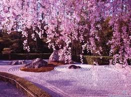 japanese zen garden wallpaper f75dwo6
