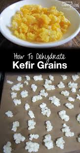 how to dehydrate kefir grains
