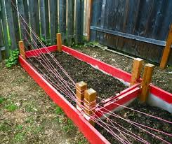 how to keep dogs out of garden beds
