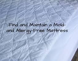 mold free mattress
