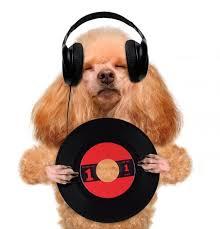 Music Headphone Vinyl Record Wall Decal Wallmonkeys Com