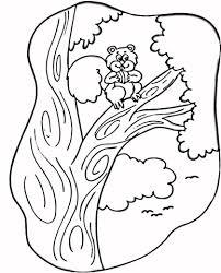 Eekhoorn In De Boom Kleurplaat Gratis Kleurplaten Printen