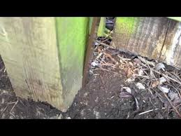 Rotted Leaning Fence Post Don T Waste Time And Effort Digging Out The Broken Post Fix It Post Buddy Is So Quic Wood Fence Post Fence Post Repair Fence Post