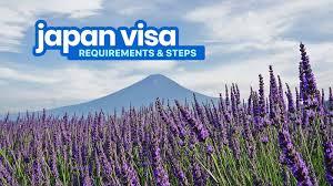 2020 an visa requirements