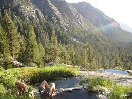 Iva Bell Hot Springs | Hot springs, John muir wilderness, Places to visit