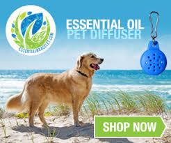 pendant for diffusing essential oil