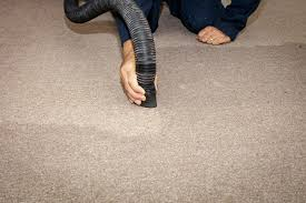 get rid of that wet carpet smell