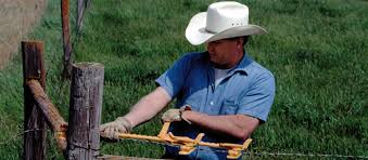 Uk Wire Fencing Supplier Agricultural Fence Equestrian Fencing Garden Fencing Fencing Tools Fence Accessories From The The Fenceline