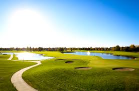Image result for panther creek subdivision springfield il pictures