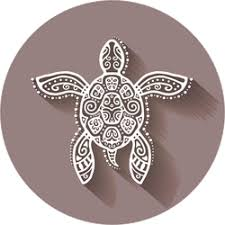 Turtle Stickers Car Decals Over 60 Unique Designs