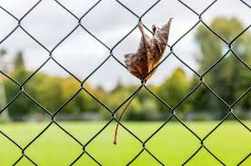 Pros And Cons Of Chain Link Fencing In Lake Forest Il Action Fence