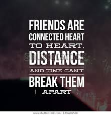 quotes on friendship wooks