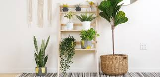 12 diy plant stand ideas for indoor