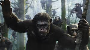 Movie Review: 'Dawn Of The Planet Of The Apes' : NPR