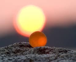 orange sea glass marble
