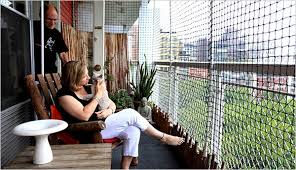 Cat S Balcony Scene On Enclosed Spaces Called Catios The New York Times