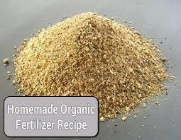 homemade organic fertilizer recipe