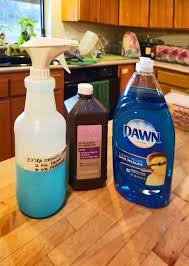 diy carpet cleaner solution with dawn