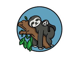 they call me the sloth by kallie fields