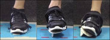 role in inversion ankle sprain