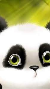 cute panda wallpapers gallery 2020