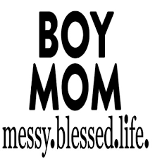 Boy Mom Messy Blessed Life Vinyl Decal Sticker For Home Cup Mug Glass Wall Decor 1 93 Picclick Uk